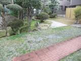 殿山町庭園
